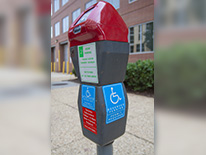 Disability Parking - gray and light blue double-headed parking meters