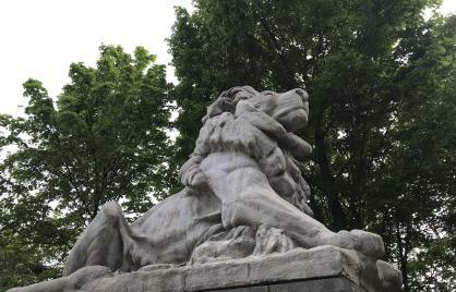 lion on taft bridge