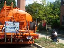 How to Water Trees - man watering a tree from an orange water tank truck