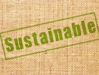 Sustainability Plan - burlap sack with the word 'sustainable' printed on it, in green
