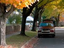 Photo of an autumn colored tree-lined residential street with one parked car